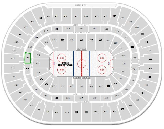 Section 314 highlighted at Honda Center