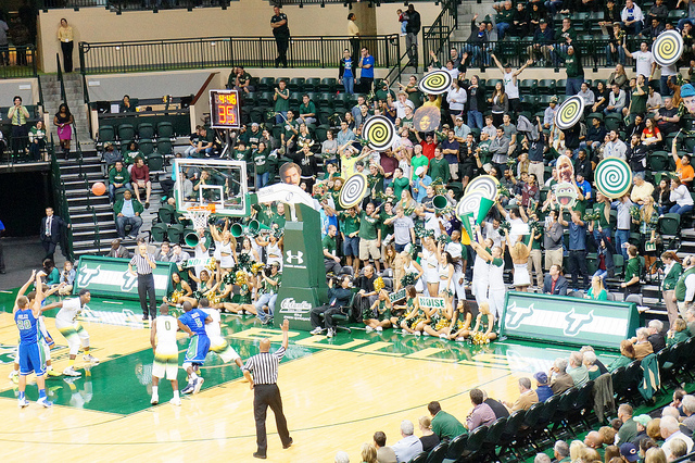 South Florida basketball chairbacks
