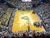 Matthew Knight Arena basketball