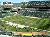 Oakland Raiders Seat View for Oakland Coliseum Section 313