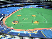 Seat View for Rogers Centre Section 519