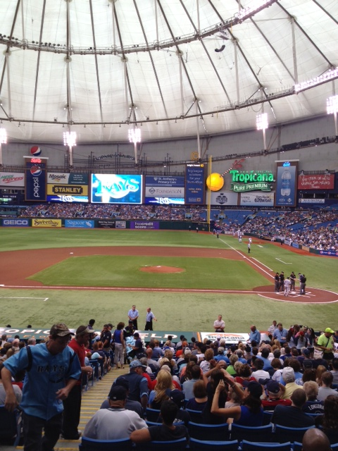 View at Tropicana Field