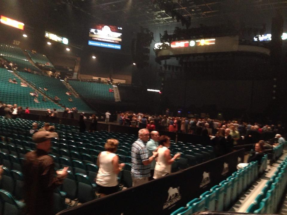 Perfect MGM Grand Garden Arena Section 8