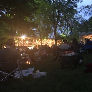 Concert Seat View for Ravinia Lawn
